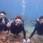 沖縄ダイビング☆1/29 サンゴ礁体験ダイビング 14時~ しおん