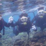沖縄ダイビング☆ 2/20 珊瑚礁体験ダイビング 13時~ しおん・なすび