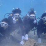 沖縄ダイビング☆2/16    珊瑚礁体験ダイビング    13:00〜    しおん、とも