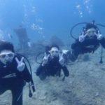 沖縄ダイビング☆2/25 珊瑚礁体験ダイビング 8時~ しおん