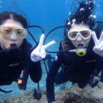 沖縄ダイビング☆2/7  青の洞窟体験ダイビング 15:30~ なすび