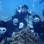 沖縄ダイビング☆ 2/17 珊瑚礁体験ダイビング 8時~ なすび・しおん
