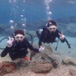 沖縄ダイビング☆2/27 青の洞窟体験ダイビング 10時半~ なすび