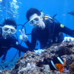 沖縄ダイビング☆2/3 青の洞窟体験ダイビング 15:30~ なすび