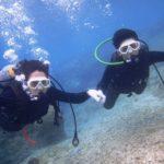 沖縄ダイビング☆2/9 サンゴ礁体験ダイビング 8時~ なすび