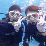 沖縄ダイビング☆2/13 サンゴ礁体験ダイビング 13時~ しおん