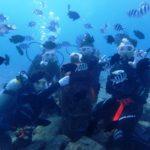 沖縄ダイビング☆ 2/26 珊瑚礁体験ダイビング 13時~ なすび・とも