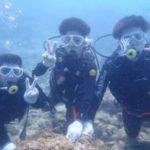 沖縄ダイビング☆3/14 珊瑚礁体験ダイビング 10時半~ しおん