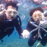 沖縄ダイビング☆3/13 珊瑚礁体験ダイビング 8時~ しおん