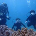 沖縄ダイビング 3/18 珊瑚礁体験ダイビング 13時~ とも・しおん