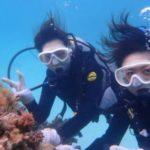 沖縄ダイビング☆3/7 サンゴ礁体験ダイビング 12時半〜 しおん