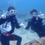 沖縄ダイビング☆3/18 珊瑚礁体験ダイビング 10時半~ しおん