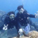 沖縄ダイビング☆3/14 珊瑚礁体験ダイビング 13時~ とも
