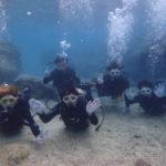 沖縄ダイビング☆3/4 珊瑚礁体験ダイビング 10時半~ なすび・しおん
