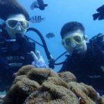 沖縄ダイビング☆3/1 珊瑚礁体験ダイビング 15時半~ なすび