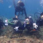 沖縄ダイビング☆3/2 珊瑚礁体験ダイビング 10時半~ なすび・しおん
