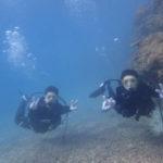 沖縄ダイビング☆3/7 サンゴ礁体験ダイビング 9時〜 なすび
