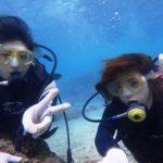 沖縄ダイビング☆3/11 珊瑚礁体験ダイビング 10時~ なすび