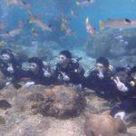 沖縄ダイビング☆3/12 珊瑚礁体験ダイビング 10時半~ しおん・ドラ