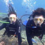 沖縄ダイビング☆3/13 珊瑚礁体験ダイビング 15時半~ なすび