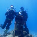 沖縄ダイビング☆ 3/17 珊瑚礁体験ダイビング 9時~ しおん