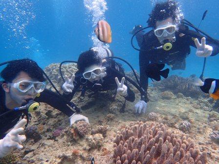 沖縄ダイビング☆3/22 珊瑚礁体験ダイビング 11時~ なすび