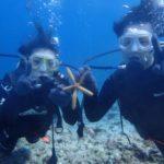 沖縄ダイビング☆4/30 青の洞窟体験ダイビング 13時~ なすび・ローラ