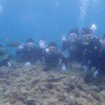 沖縄ダイビング☆ 4/23 青の洞窟体験ダイビング 15時~  しおん・りょう・くらもと