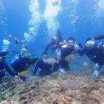 沖縄ダイビング☆4/20 青の洞窟体験ダイビング 10:00〜 とも・ドラ・しおん・りさ・みーつ