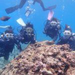 沖縄ダイビング☆4/30 青の洞窟体験ダイビング 10時~ なすび・ドラ・ローラ