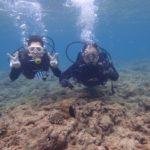 沖縄ダイビング☆4/4 サンゴ礁体験ダイビング 13時~ しおん・とも
