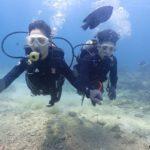 沖縄ダイビング☆4/6 サンゴ礁体験ダイビング 10時半~ どら