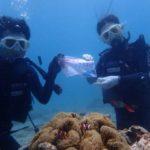 沖縄ダイビング☆5/4 珊瑚礁体験ダイビング 10時~ なすび
