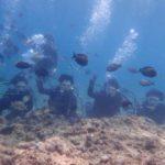 沖縄ダイビング☆5/5 青の洞窟体験ダイビング 10時~ なすび・しおん