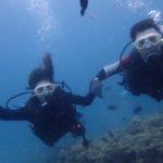 沖縄ダイビング☆5/3 珊瑚礁体験ダイビング 13時~ なすび