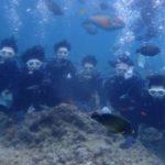 沖縄ダイビング☆ 5/31 青の洞窟体験ダイビング 15時半~ しおん・なすび・ローラ・ドラ