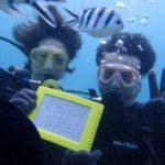 沖縄ダイビング☆5/3 極上珊瑚礁2体験ダイビング 10時~ ドラ