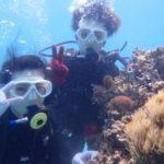 沖縄ダイビング☆5/2 珊瑚礁体験ダイビング 10時~ しおん
