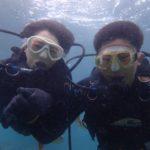 沖縄ダイビング☆5/3 珊瑚礁体験ダイビング 8時~ なすび