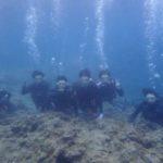 沖縄ダイビング☆6/17 青の洞窟体験ダイビング 13:00~ なすび・ドラ・みーつ・ローラ