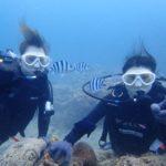 沖縄ダイビング☆6/13 珊瑚礁体験ダイビング 13時~ しおん