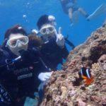 沖縄ダイビング☆青の洞窟体験ダイビング12:30~ なすび・ローラ