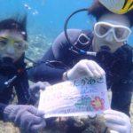 沖縄ダイビング☆7/24 青の洞窟体験ダイビング 8:00~ しおん・ローラ