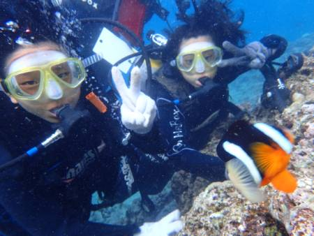 沖縄ダイビング☆7/22青の洞窟体験ダイビング 15:00~ なすび・ローラ
