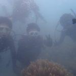 沖縄ダイビング☆8/12 珊瑚礁体験ダイビング 8時~ なすび・やす