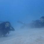沖縄ダイビング☆ 8/14 極上2DIVE珊瑚礁体験ダイビング なすび
