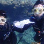 沖縄ダイビング☆ 8/6 珊瑚礁体験ダイビング 15:30~ なすび・ローラ