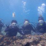 沖縄ダイビング☆8/20 青の洞窟スノーケル&体験ダイビング 12:30~ なすび・やす