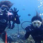 沖縄ダイビング☆8/17 珊瑚礁体験ダイビング 15:00~ しおん