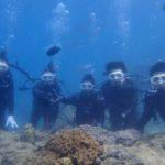 沖縄ダイビング☆8/4 珊瑚礁体験ダイビング10:30~ しおん・みーつ・ローラ